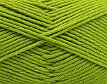 Fiber Content 50% SuperFine Nylon, 50% SuperFine Acrylic, Brand ICE, Green, Yarn Thickness 4 Medium  Worsted, Afghan, Aran, fnt2-56286
